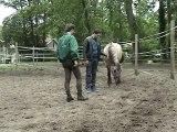 Formation au leadership facilitée par la relation homme/cheval