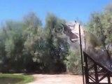 saut-tremplin-motocross-feu