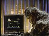Publicité - Donkey Kong Jr. (1982) (Etats-Unis)