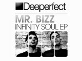Mr. Bizz - Warp Tension (Original Mix) [Deeperfect]
