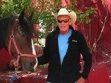 Horseback Riding Ottawa - Why is horseback riding a fantastic family activity?