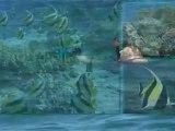Ecotourisme à Madagascar : balade en pirogue dans le lagon de Toliara