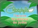 Chlorophylle épisode 14 sur Télé Doller