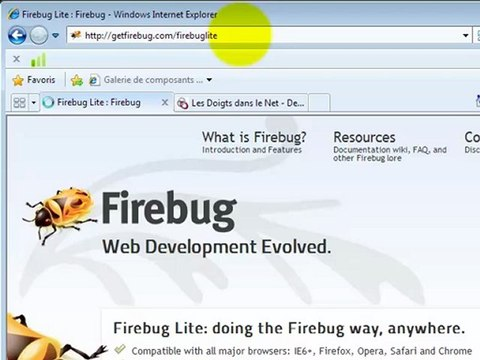 Installer Firebug sur Chrome, IE et Firefox