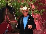 Horseback Riding Ottawa - My first horseback riding experience.