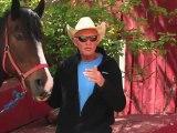 Horseback Riding Ottawa - How can I introduce my young child to horseback riding and pony riding?