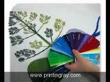 Custom Banners - Custom Stickers Printing Banners   printingray.com