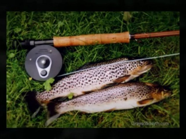 Fly Fishing Rods – Various Materials to Choose From | Trout Fishing Review