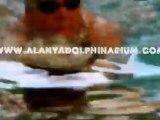 Zwemmen met dolfijnen in Alanya Turkije