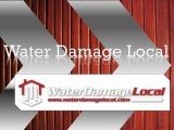 Basement Flooding Clean Up - Humble, TX - Water Damage Local