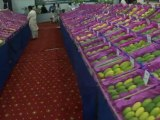 All types of Pakistani Mangoes King of Fruits on a 7th Fair Jun 25, 2011 Rahim Yar Khan Pakistan