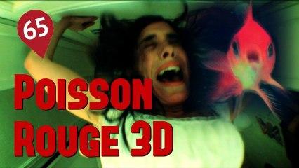 65 - POISSON ROUGE 3D