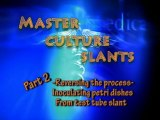 Let's Grow Mushrooms! 2.8 - Master Culture Slants
