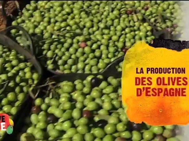 Saveurs d'Olive