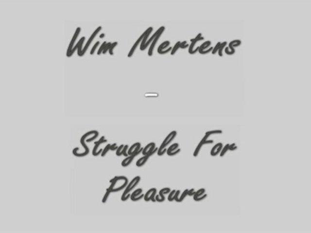 Wim Mertens - Struggle For Pleasure - Piano Cover