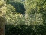 (39) Jura N°1, Jeurre aire de service, Les moulins, La Roche Blanche, Crêt au Merle; Choux, Vuloz, St Claude, Ravilloles ...Juin 2009