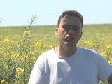 Élevage Dauteuil: Entrez dans le monde de la volaille fermière - 51210 Vauchamps