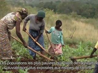 Where The Rain Falls / CARE France - Tanzanie
