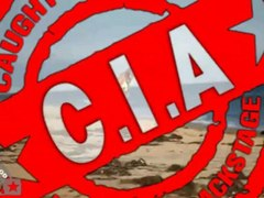 Ashley Tisdale celebrates birthday in skimpy outfits