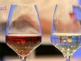 Bienvenue Chez Vous - La Suite du 08 juin 2012