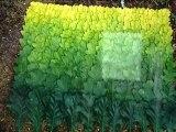 Nils Udo met l'Art Nature au vert dans le Cantal