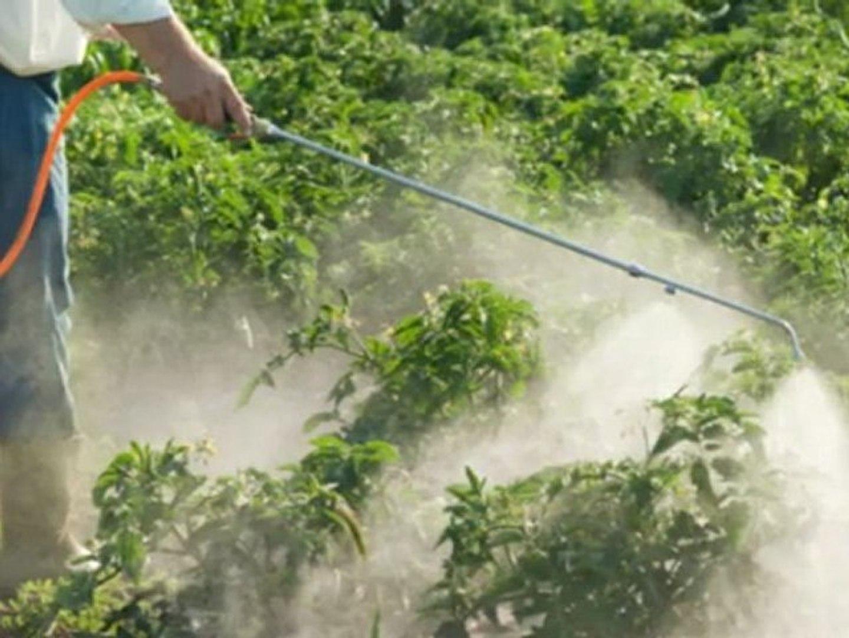 A Plus Pest Control - (435) 850-2704