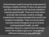 Vet Clinics for Your Beloved Pet