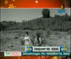 Amani  - Tollywood Old Songs Special -  01