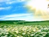 RİSALE-İ NUR'U YANLIŞ YORUMLAYAN BAZI KARDEŞLERİMİZE SORUN - 1