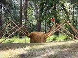 Parcours de cross Championnats d'Europe Poney Fontainebleau 2012
