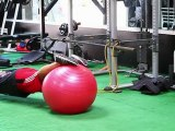Fast Lap Fitness: Stability Training with a Swiss Ball