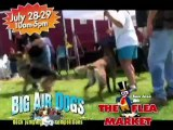 Dock Jumping Competition | Big Air Dogs | Flea Market Events