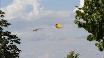 1er festival de cerfs-volants à Auxerre- diaporama