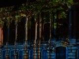 Le Capitole de Toulouse - Son et lumière sur le thème de l'eau