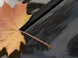 Zeki Müren -- Böyle bir kara sevda kara toprakla biter