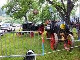 rassemblement-tracteurs-habere-poche-fete-des-bucherons (74)