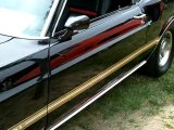 1969 Ford Mustang Mach 1 - Great classic car. Black mustang Mach 1.