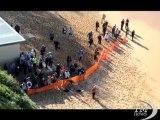 Australia, il cadavere della balena arriva sulla spiaggia. Triste forma di turismo sulla costa a nord di Sydney