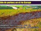 Ecologistas denuncian vertido purines en río Barayo, Navia, Asturias