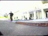 Rodney mullen tony hawk pro skater 2