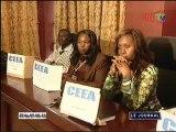 Rapport de la mission conjointe des observateurs panafricains et des experts électoraux africains