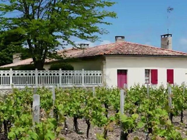 Châteaux & Vignobles à Saint-Seurin de Cadourne