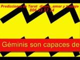 géminis y sus parejas idealesTarot pareja dinero amor.com