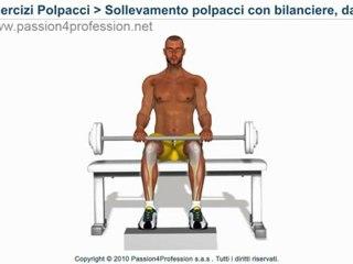 Sollevamento polpacci con bilanciere, da seduto ( esercizio polpacci )