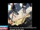 Brie-Comte-Robert : un python retrouvé mort dans les égouts