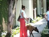 Belgian Malinois: Eva Mendes And Her Guard Dod Take A Stroll In West Hollywood.