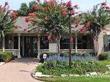 Stone Ridge Apartments in Conroe, TX - ForRent.com