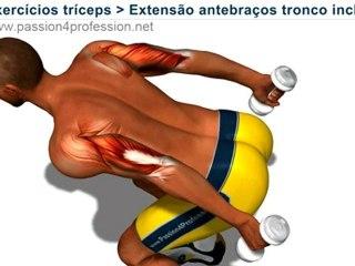 Treino de braço: Extensão antebraços tronco inclinado
