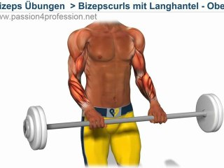 Unterarm training Bizeps curls