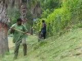 Mode d'emploi(s). Entretien d'espaces verts et auxiliaire médical